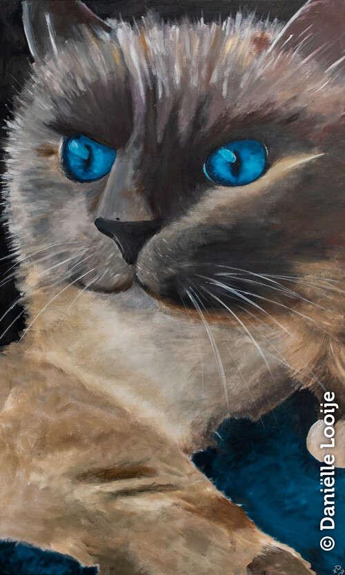 Groot portret van een kat 100x60